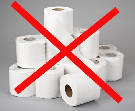 toilet-paper-free